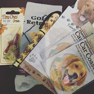 When your Mom & Dad get you ALL the #goldenretriever swag. 🐶✌🏻️❤️ #crazydogmomma